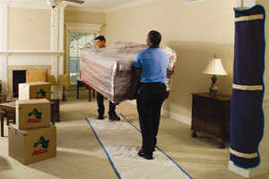 Professional Mover to Move Items Within My Home